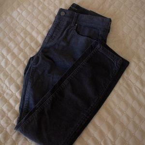 NWT Ann Taylor velvet skinny jeans - Grey - 2P